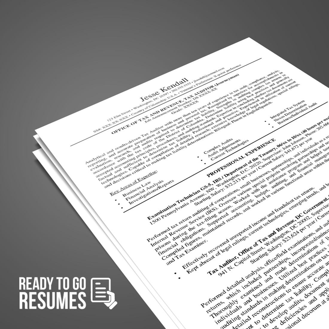 federal resume diy template ready to go resumes Resume Templates Word 2013 standard resume